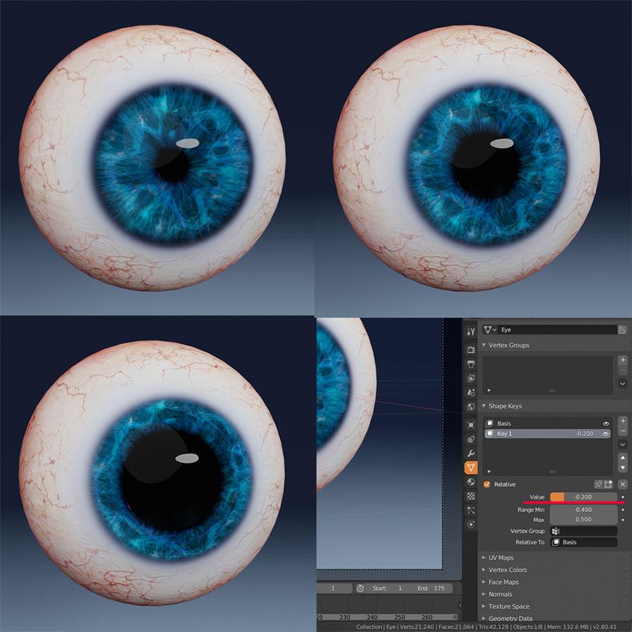 인간의 눈 royalty-free 3d model - Preview no. 6