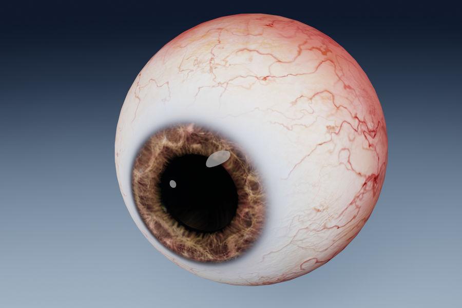 인간의 눈 royalty-free 3d model - Preview no. 4