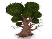 참나무 3d model