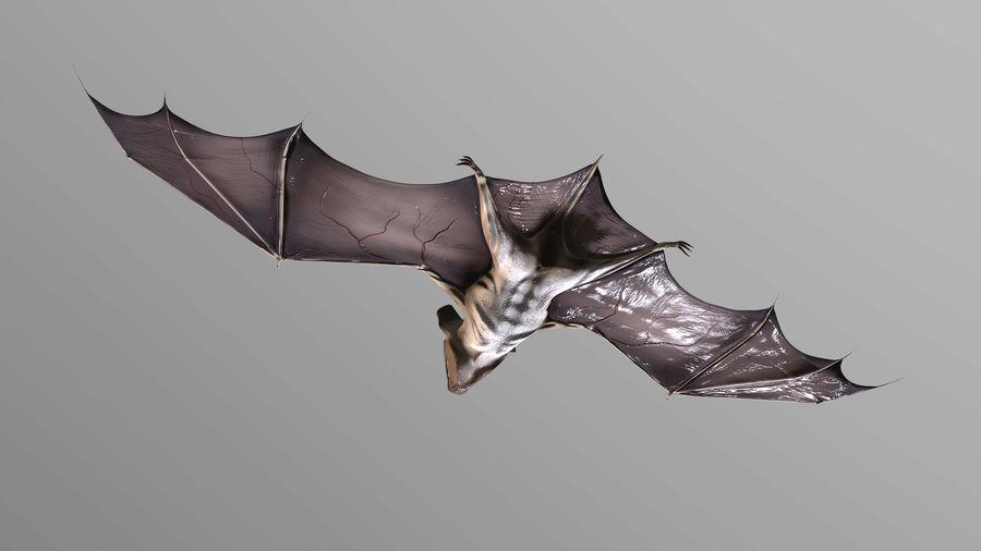 Bat royalty-free 3d model - Preview no. 5