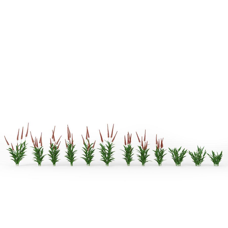 Urbilis Mod Planter royalty-free 3d model - Preview no. 3