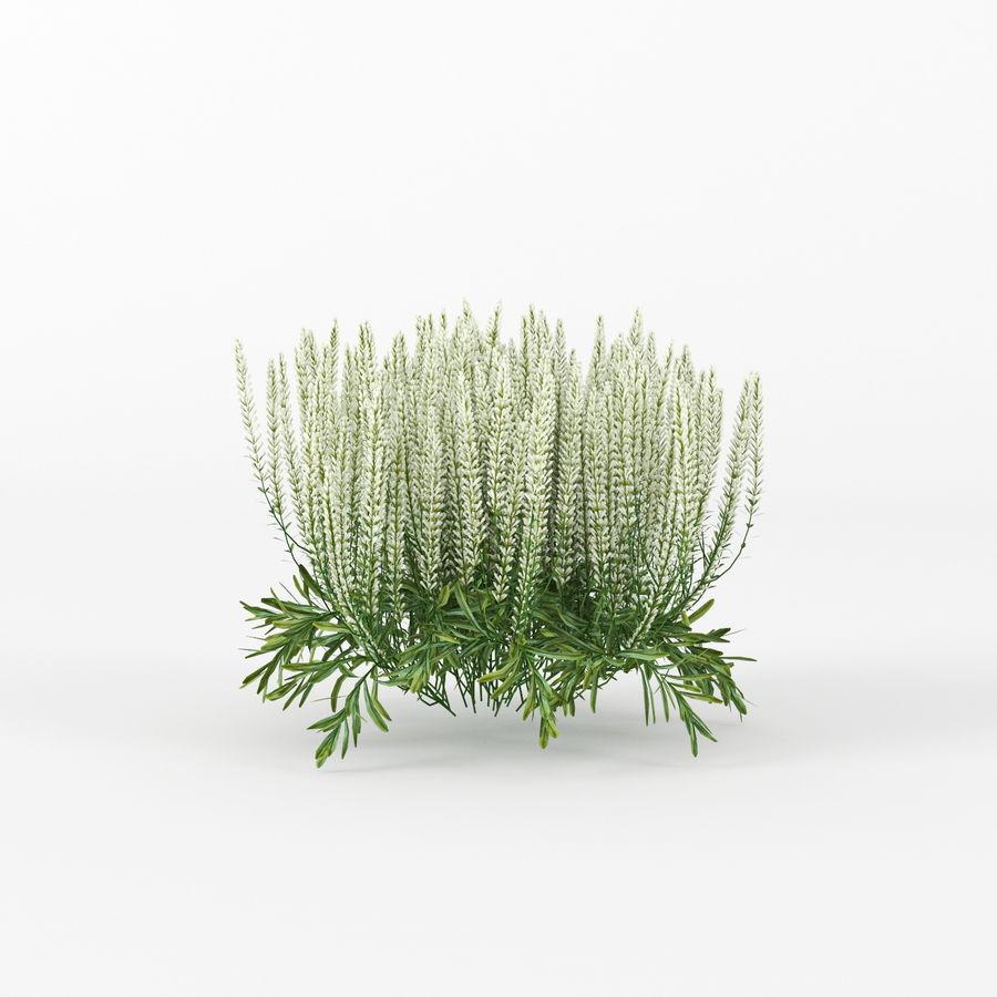 Urbilis Mod Planter royalty-free 3d model - Preview no. 4