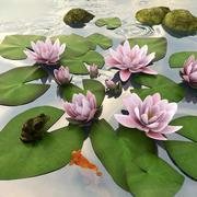 池塘景观 3d model