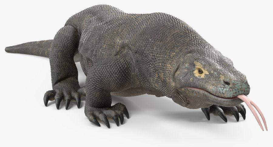 Komodo Dragon Walking Pose 3D Model royalty-free 3d model - Preview no. 5