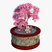 小さな日本の木 3d model