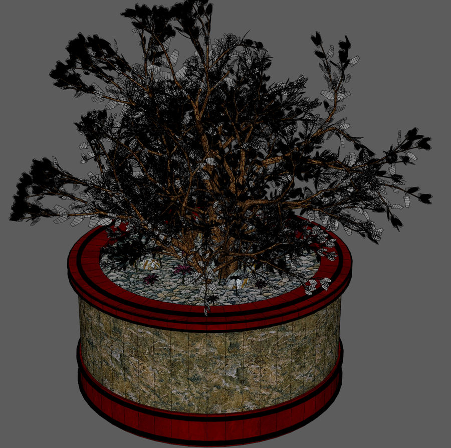 Asian Plant royalty-free 3d model - Preview no. 9