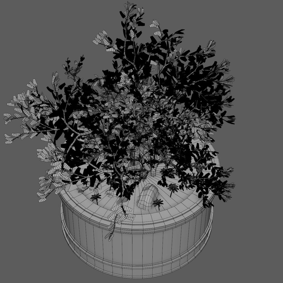 Asian Plant royalty-free 3d model - Preview no. 8