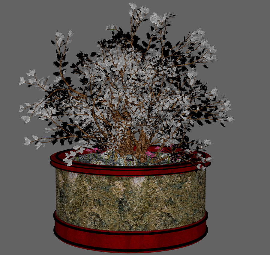 Asian Plant royalty-free 3d model - Preview no. 5