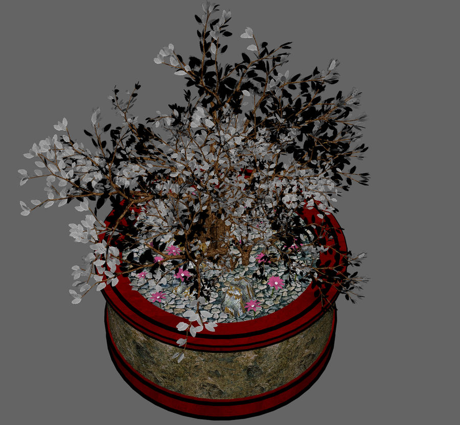 Asian Plant royalty-free 3d model - Preview no. 7