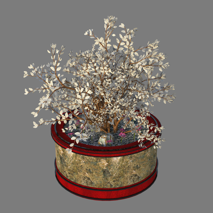 Asian Plant royalty-free 3d model - Preview no. 2
