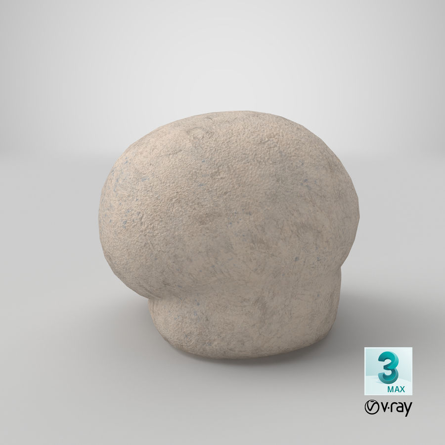 Champignon Puffball royalty-free 3d model - Preview no. 16