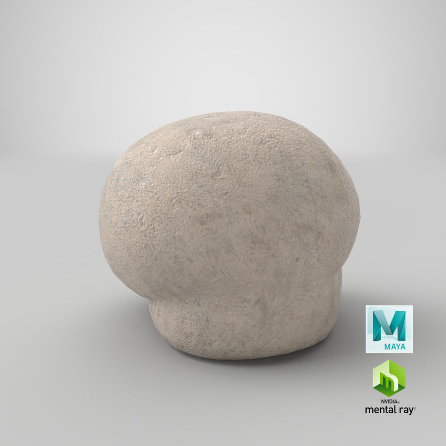 Puffball-paddestoel royalty-free 3d model - Preview no. 15