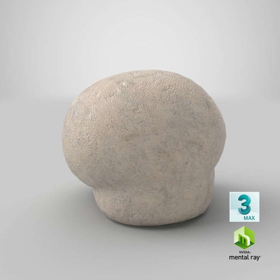 Champignon Puffball royalty-free 3d model - Preview no. 17