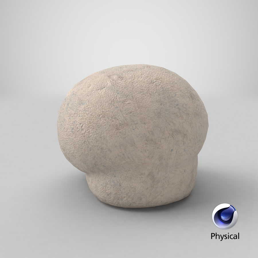 Puffball-paddestoel royalty-free 3d model - Preview no. 20