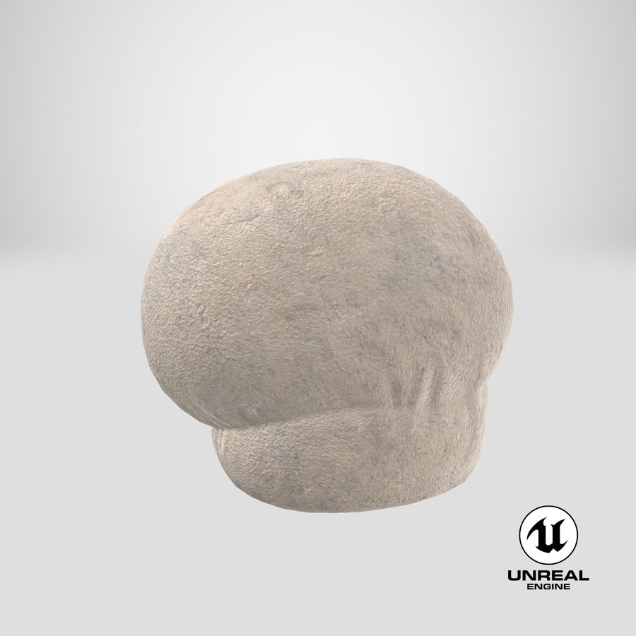 Puffball-paddestoel royalty-free 3d model - Preview no. 18