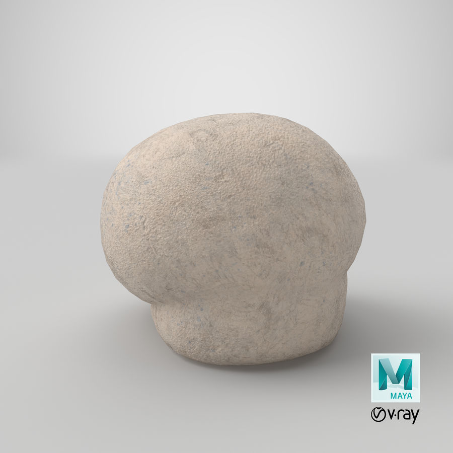 Puffball-paddestoel royalty-free 3d model - Preview no. 14