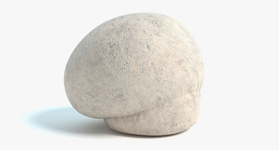 Champignon Puffball royalty-free 3d model - Preview no. 2