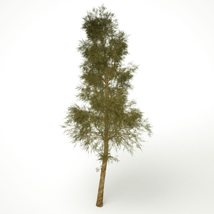 Tall royalty-free 3d model - Preview no. 1