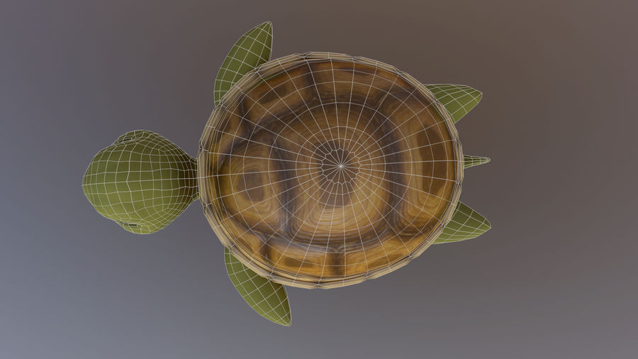 Cartoon Low Poly Sea Turtle royalty-free 3d model - Preview no. 9