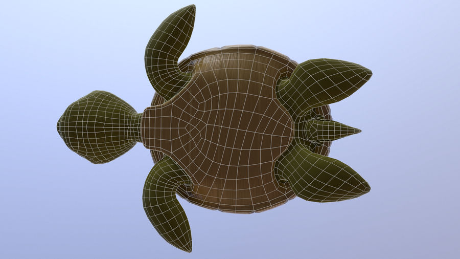 Cartoon Low Poly Sea Turtle royalty-free 3d model - Preview no. 8