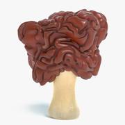 假羊肚菌蘑菇 3d model