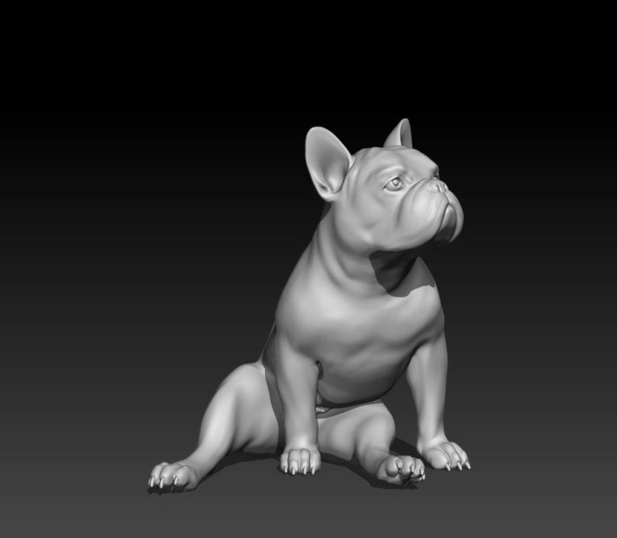 französische Bulldogge 4 royalty-free 3d model - Preview no. 1