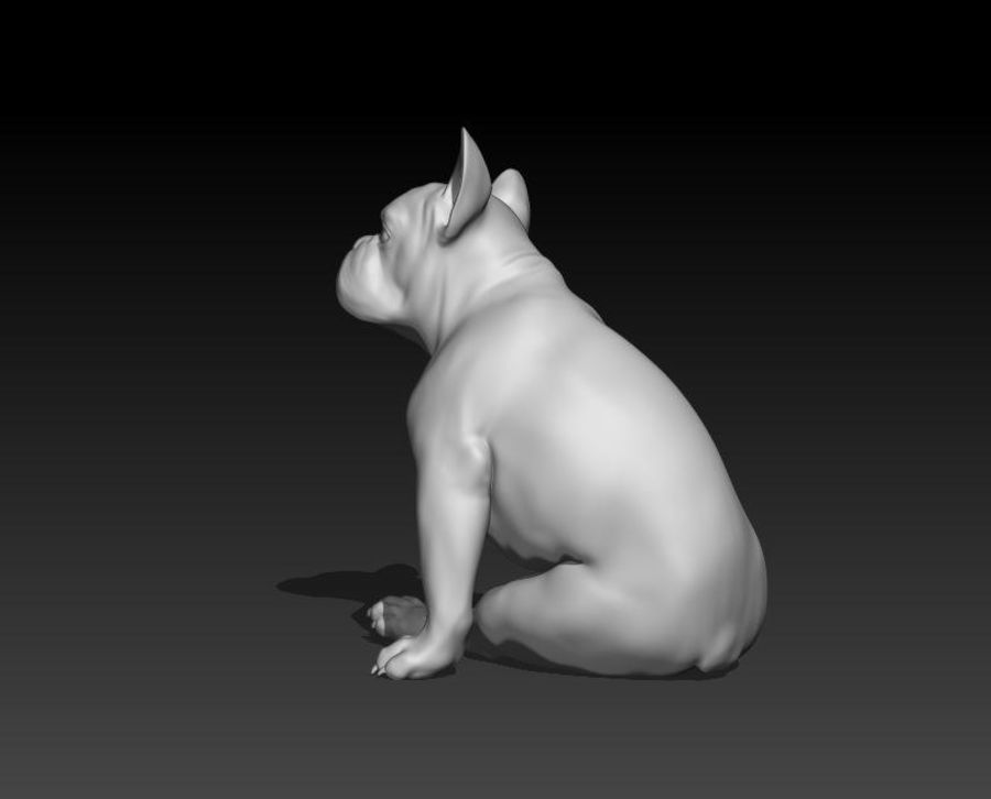 französische Bulldogge 4 royalty-free 3d model - Preview no. 4