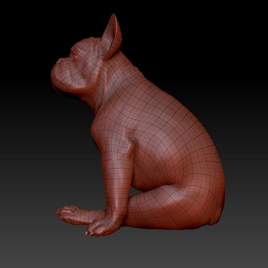 französische Bulldogge 4 royalty-free 3d model - Preview no. 7