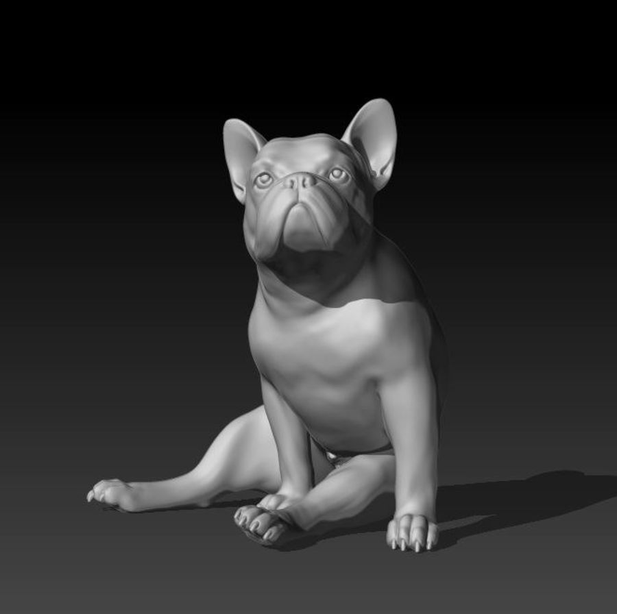 französische Bulldogge 4 royalty-free 3d model - Preview no. 6
