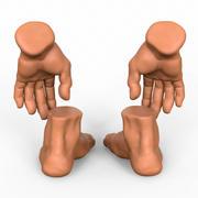 Combo mains et pieds 3d model