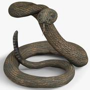 Serpent à sonnette 3d model