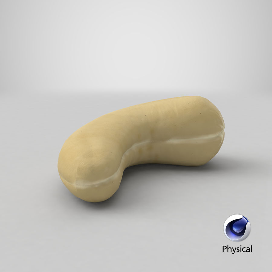 Cashew royalty-free 3d model - Preview no. 22