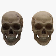 Cartoon Skull 3d model
