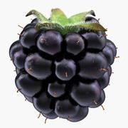 Blackberry med päls 3d model
