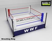 Pierścień zapaśniczy 3d model