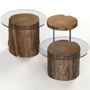 A set of dark glass tables from stumps and slab 3d model