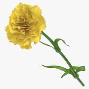 Гвоздика - Желтая 3d model