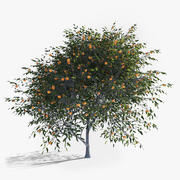 Tree树 3d model