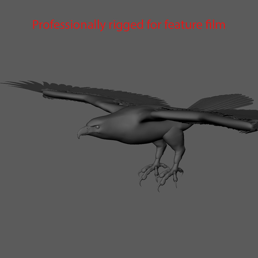 3D Bald Eagle American Rigged Model royalty-free 3d model - Preview no. 13