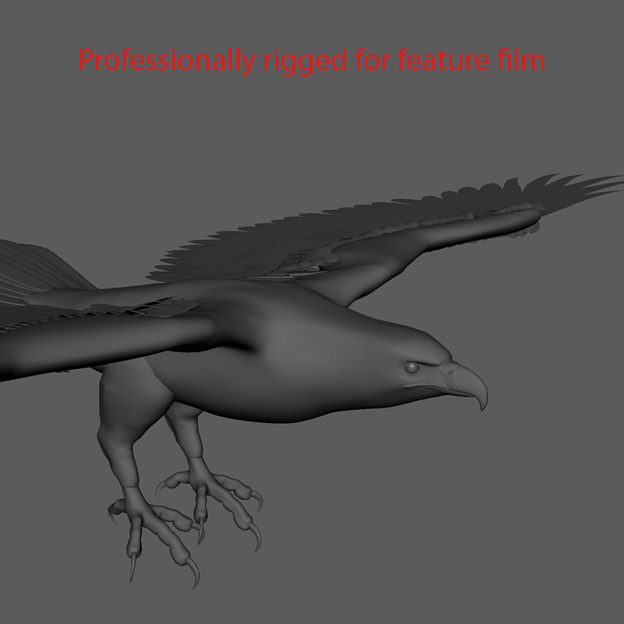 3D Bald Eagle American Rigged Model royalty-free 3d model - Preview no. 16
