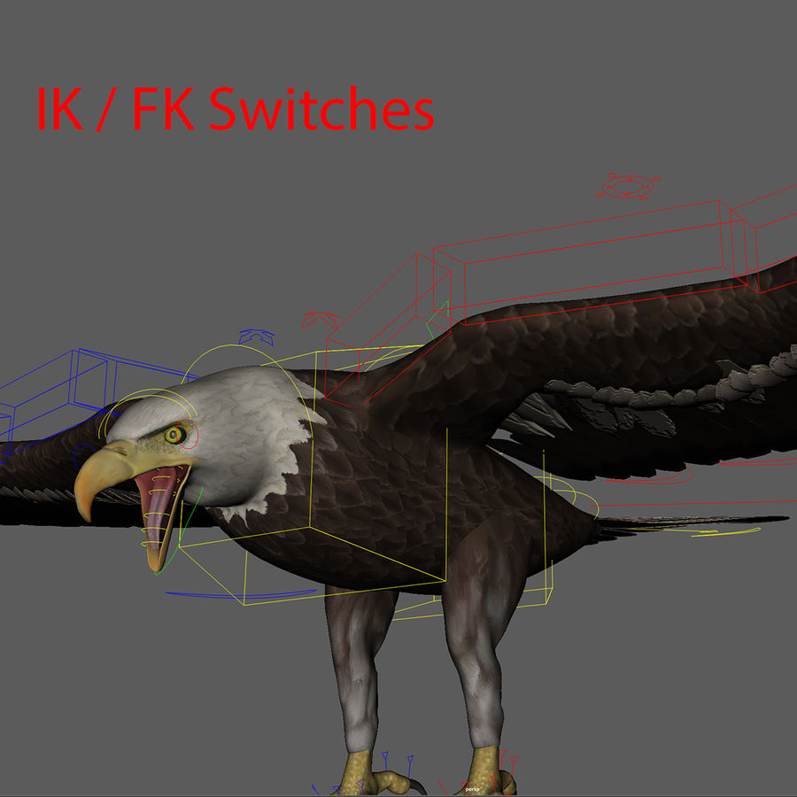 3D Bald Eagle American Rigged Model royalty-free 3d model - Preview no. 4