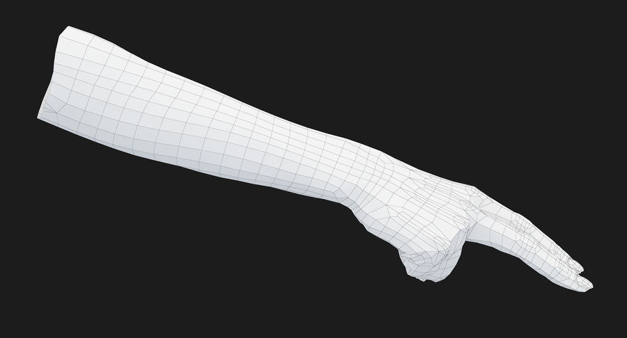 Female Arm A (Pose F Textured) Two Fingers royalty-free 3d model - Preview no. 36