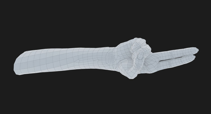 Female Arm A (Pose F Textured) Two Fingers royalty-free 3d model - Preview no. 56