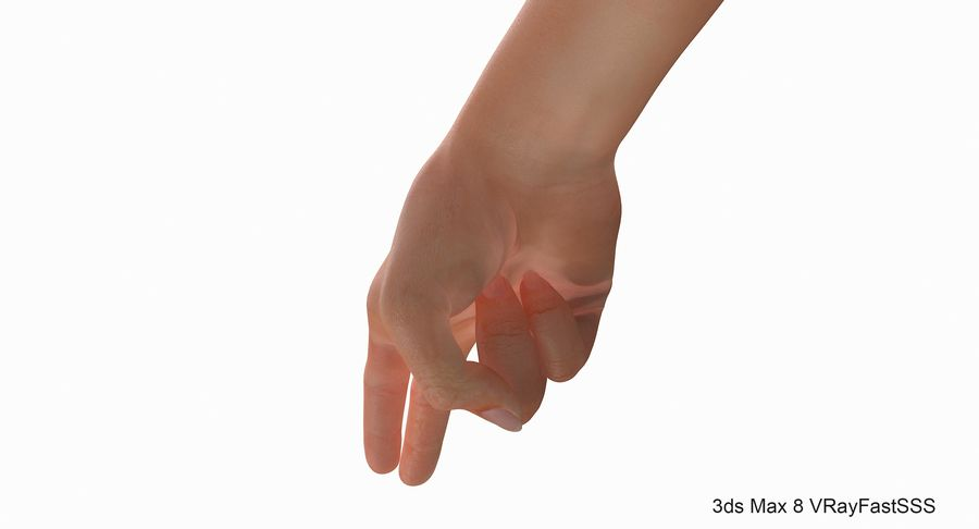 Female Arm A (Pose F Textured) Two Fingers royalty-free 3d model - Preview no. 8