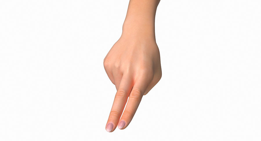 Female Arm A (Pose F Textured) Two Fingers royalty-free 3d model - Preview no. 18