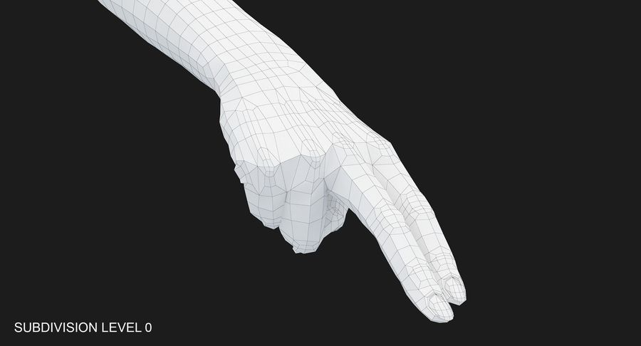 Female Arm A (Pose F Textured) Two Fingers royalty-free 3d model - Preview no. 31