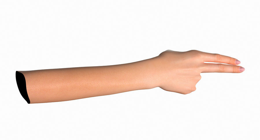 Female Arm A (Pose F Textured) Two Fingers royalty-free 3d model - Preview no. 28