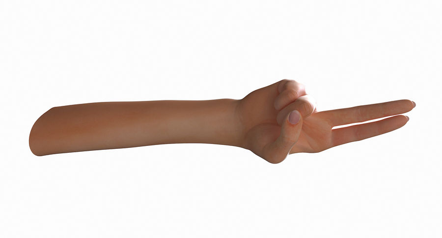 Female Arm A (Pose F Textured) Two Fingers royalty-free 3d model - Preview no. 29