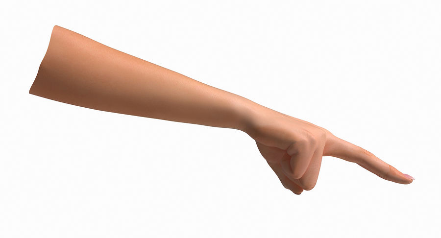 Female Arm A (Pose F Textured) Two Fingers royalty-free 3d model - Preview no. 30
