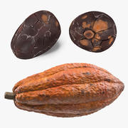 Cocoa Bean and Fruit 3D Models Collection 3d model